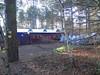 (missflite68) Tags: elvedenforest centerparcs winterwonderland santasworkshop christmas