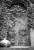 (jsrice00) Tags: leicammonochrom246 50mmf14summiluxasph chicago door vines pot architecture