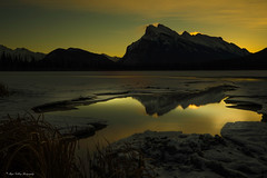 Golden tones (Margarita Genkova) Tags: vermillion lake banff national park rundle mountain frosen snow grass trees yellow reflection golden hours tones mysterious dramatic dreamy