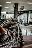 Indian Scout (Reeree92) Tags: motorbike bike indianscout america nikon nikonphotography nikontop nikonprofessional nikonofficials madagascar photography photographer moto motos