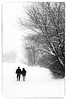 merry christmas (Sandy...J) Tags: christmas snow landscape blackwhite monochrom romantic people snowfall winter photography natur