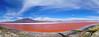 Laguna Colorada / Bolivya (Son Yer Değiştirici) Tags: laguna colorada bolivia bolivya san pedro de atacama göl world dünya turu trip travel tur yolculuk