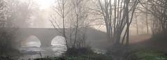 Le pont de l'Epinay (martine_ferron) Tags: pont brume matin andouillé mayenne rivière lernee