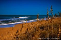 Natural Rhythm (T i s d a l e) Tags: tisdale naturalrhythm coast dunes beach atlanticocean outerbanks winter january easternnc 2017
