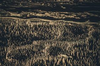 Paysage de stalagmites