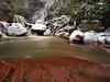 The Favorite (Bill Fultz) Tags: douglasfalls blackwaterriver westvirginia waterfall