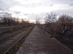 DSCN5334 (TajemniczaIstota761) Tags: abandoned railway viaduct wiadukt kolejowy