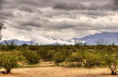 Arizona Misty Mountains HDR (Andrew Aliferis) Tags: mountain mist yucca arizona andy andrew aga aliferis nikon d300s clouds hdri tonemapped desert mojave