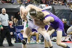 591A7819.jpg (mikehumphrey2006) Tags: 2017statewrestlingnoahpolsonsports state wrestling coach sports action pin montana polson