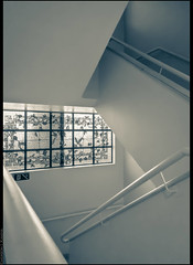 untitled (emersonik) Tags: building lines linhas stairs buildings stair interior indoor stainedglass line stairway diagonal staircase escada straight vitrais vitral escadas edifcio linha edifcios diagonals stainedglasses inclined reta retas diagonais inclinada blownhighlights inclinado highlightclipping
