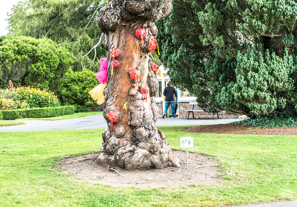 SCULPTURE IN CONTEXT 2015 AT THE NATIONAL BOTANIC GARDENS [UNOFFICIAL PREVIEW] REF-107300