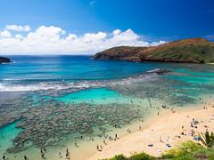 Hanauma Bay (-spam-) Tags: ocean usa sun holiday beach water coral hawaii pacific oahu olympus 12mm hanaumabay ep5 hanaumabaynaturepreserve