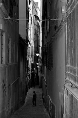 """The Child"" Italian Street Life (Alleys of Genova). (giannipaoloziliani) Tags: life street city houses homes windows urban blackandwhite italy game monochrome dark real lights graffiti monocromo nikon flickr downtown strada italia day shadows child pigeon liguria report balloon citylife streetphotography streetlife ombre genoa genova cables wires suburbs urbano luci walls lamps narrow piccione biancoenero reallife reportage citt buio alleys gioco muri urbanlife pallone finestre vicoli bambino periphery tipical architectures blacklights urbanstreet darklights narrowroad monocromatico genoacity vicolidigenova urbanblackandwhite characteristic d3200 darkview streetcity alleysofgenova strongview streetgenoa giannipaoloziliani"