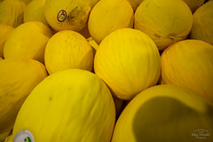 IMG_M5724 (Max Hendel) Tags: frutas fruits cores melon melo bymaxhendel maxhendelphotography