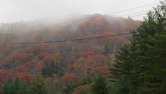 Blue Ridge Parkway (Jackie***) Tags: autumn fallleaves mountains rain fog fallcolors pumpkins autumnleaves blueridgeparkway blowingrock autumncolor boonenc fallmums