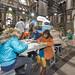 station zwartwit dayone mattel antwerpen trein landschap reportage wijn antwerpencentraal thomasfriends thomastrein