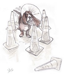 Old Sketch (Crickett-Grrrl) Tags: dog illustration sketch cone drawing sketchbook safety doodle buster bassethound conehead