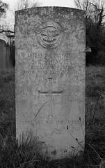 CWGC 1st Private S R Pringle Royal Air Force (IanAWood) Tags: pinner londoncemeteries londonboroughofharrow walkingwithmynikon nikkorafs24mmf14g pinnercemetery nikondf