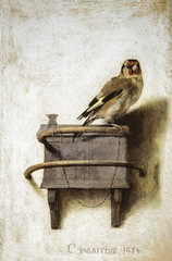 Carel Fabritius - The Goldfinch, 1654 at Royal Picture Gallery Mauritshuis - The Hague Netherlands (mbell1975) Tags: holland netherlands dutch museum painting golden gallery museu goldfinch fine arts picture royal grand denhaag muse musee hague age museo nl masters flemish muzeum niederlande carel fabritius mauritshuis finearts the zuidholland beaux beauxarts mze gallerie musum niederland 1654