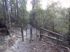 2015-05-23 Snug Falls 05 - Track turnstile (Cowirrie) Tags: tree forest fence track tasmania turnstile snugtiers snugfallstrack snugfallsstaterecreationarea