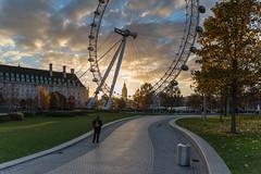 Jubilee Gardens Sunset (scarlet-pimp) Tags: timeoutlondon londonist sunset milleniumwheel bigben cityscape countyhall clouds londoneye visitlondon london landmark jubileegardens elizabethtower attractions sky park architecture ferriswheel places path theguardian