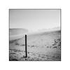 That's where I stand (cardijo) Tags: austria österreich salzburg landschaft landscape fog nebel winter analog film ilford fp4 rodinal rolleiflex carlzeiss tessar 6x6 nikon coolscan