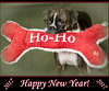 Happy New Year!  A Blessed 2017! (ctofcsco) Tags: 14 1250 50mm 50d black bone brindle brown canon christmas colorado coloradosprings dog ef50mmf14usm eos50d explore f14 green happynewyear hoho newyear portrait prime puppy red reversebrindle toy unitedstates usa white bokeh explored geo:lat=3893083779 geo:lon=10489145279 geotagged gleneyrie nature northamerica boxer pet female