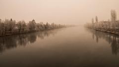28-12-16 Traunufer (Michael K. Springer) Tags: 2016 austria europa nebel oberösterreich oö traun wetter winter witterung österreich