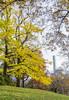 _DSC4138 (purin_cess) Tags: centralpark 2016 autumn 11月 十一月 秋 中央公園 紐約 ny newyork