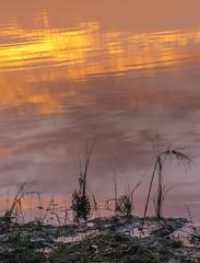 _DSC0300 (johnjmurphyiii) Tags: 06416 autumn clouds connecticut connecticutriver cromwell dawn originalnef riverroad sky sunrise tamron18270 usa johnjmurphyiii