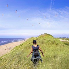 Feeling free like a bird on top of the Dutch mountains (B℮n) Tags: wijkaanzee bakkum castricum noord holland geotagged geo:lon=4601297 geo:lat=52536795 bakkumaanzee noordhollands duinreservaat dunes nature blue sky seaguls seagul hiking walking north sea noordzee beauty landscape netherlands strip dutch sand coastal wind clear day spring green grass cloud sheltered protection coastline natura water tranquil undulating kust zeemeeuw ikwilterugnaardekust hieraandekust strandhuisjes beach cottages sustainable luxury huts seagulls houses sun sunny plukdedag zeemeeuwen 50faves topf50
