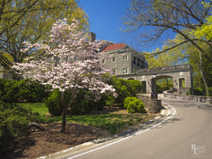 Cheekwood Spring (RobertCross1 (off and on)) Tags: 1250mmf3563mzuiko cheekwood em5 middletennessee nashville omd olympus south tn tennessee architecture blossoms bluesky flowers garden house landscape mansion museum road spring trees