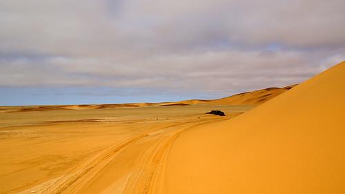 DSC07712 - NAMIBIA 2013