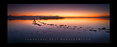 The Beginning of Something Beautiful (RonnieLMills) Tags: islandhill rough island causeway rocks reflections sunrise early morning high tide strangford lough blue hour