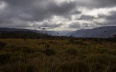 Clouds during hike (Thatscreennameisalreadytaken) Tags: cradle mountain hike olympus panasonic20mmf17 omd landscape tramping hiking nd filter