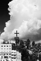 Aparecida City (mara.arantes) Tags: city aparecida pb monochrome building trees cloud vertical flickr sky