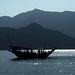 Old Douw sailing (violarosa1) Tags: douw arabiansailboat oman khor musandam khasab