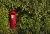 Surrounded (Breeze of the Dene) Tags: leica x1 post box green red bush tree plants nature man made royal mail