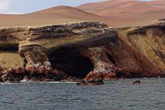 Półwysep Paracas | Paracas Peninsula