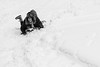 (Russo 86) Tags: bnw blackandwhite biancoenero laquila neve snow fun