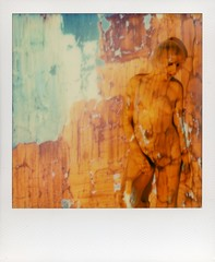 in-orange (broaddaylight) Tags: projections slr690 impossibleproject