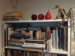 Wooden moulded fruit on top of bookshelf (spelio) Tags: australia email act ipad books ikea lost stuff shelves driftwood 2017
