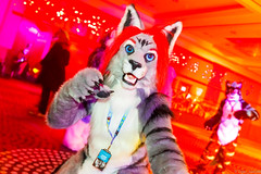 _MG_0715 (Tiger_Icecold) Tags: confuzzled cfz2016 cf2016 furcon furry convention fursuit birmingham party deaddog ddp deaddogparty