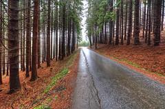 Frankenwald Winter 12/2011 -44 (sigkan) Tags: frankenwald deutschland bayern hdr nikond700 nikon1424mmf28