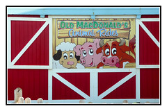 Old MacDonald (Audrey A Jackson) Tags: panasonicdmctz3 westwardho devon fun childrenspark animals colour advertising