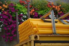 DSC_1695 (matthiasmayer410) Tags: natur baustelle kontrast gelb bunt rohre kunststoff drausen pflanzen
