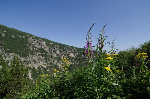Rita mountain colours ©  Still ePsiLoN