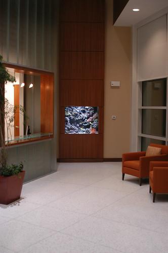 350 Gal Custom Reef - Corporate Office - CT - 1