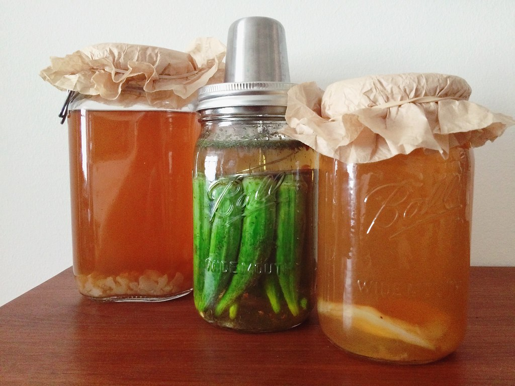 How to LactoFerment (with Pictures)
