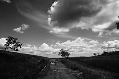 Muddy road (Goran Joka) Tags: road sky blackandwhite nature monochrome clouds landscape countryside blackwhite mud outdoor serbia trail muddyroad divčibare